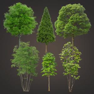 дерево png psd без фона скачать кусты зелень вырезанное