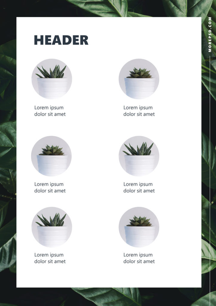 free booklet template eco style a4 book formatted psd
