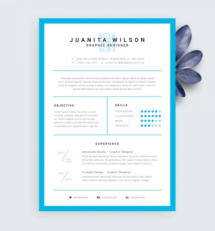 resume template free download